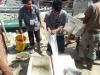 Penanganan Ikan Kerapu Sunu