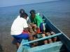 Penurunan bioreeftek ke perairan