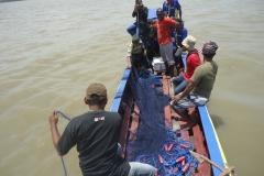 Setting gill net di Merauke