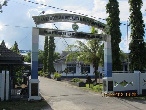 Penyelenggaraan Penilaian Inisiatif Anti Korupsi (PIAK) BPPP Ambon
