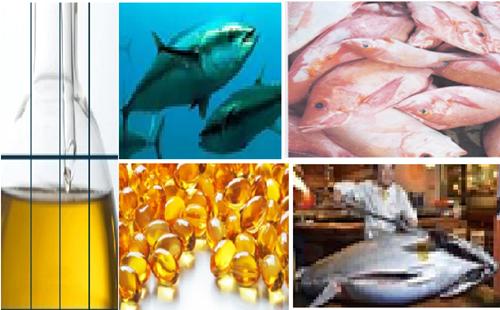 Peran Ikan Menjaga Kesehatan Tubuh