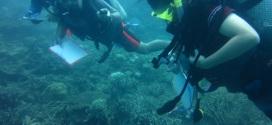 Keterampilan Pengambilan Data Biofisik Bawah Air dan Manfaatnya untuk Pengelolaan Wilayah Perairan