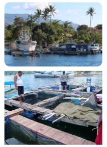 Sertifikat Kompetensi Teknologi Budidaya Perikanan