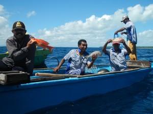 Ikan Tanngkapan Hasil Praktek Pengoperasian Rawai